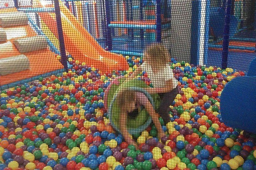 cumpleaños infantil en invaders park gava