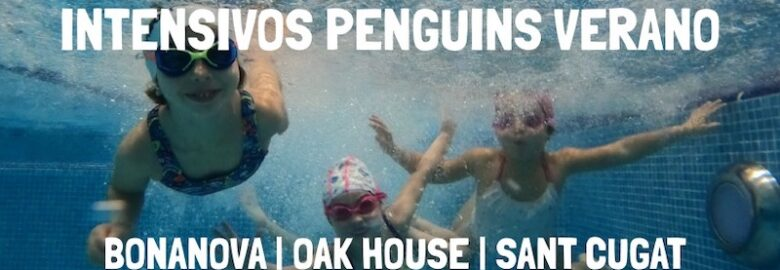 Penguins Swimming Academy