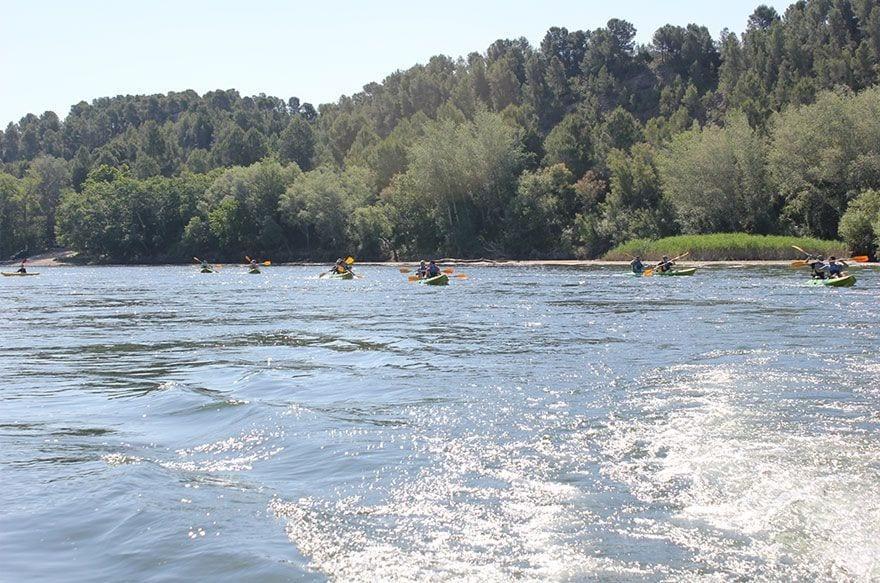 Ruta familiar en Kajak por el ebro en Tortosa