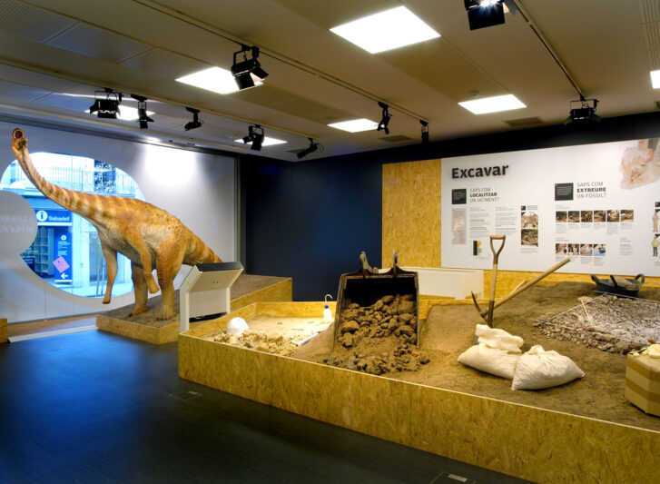 museu-institut-català-paleontologia-sabadell