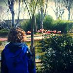 Barcelona Zoo for a fun family day out