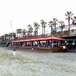 Sal Café. A terrace on the beach