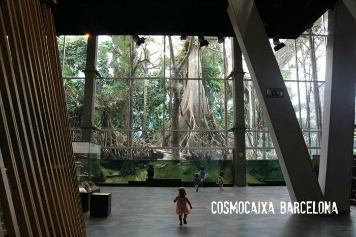 Cosmocaixa, el Museo de la Ciencia de Barcelona