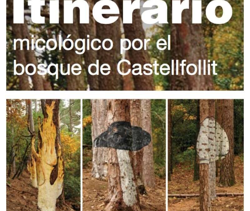 El Bosque Pintado de Poblet