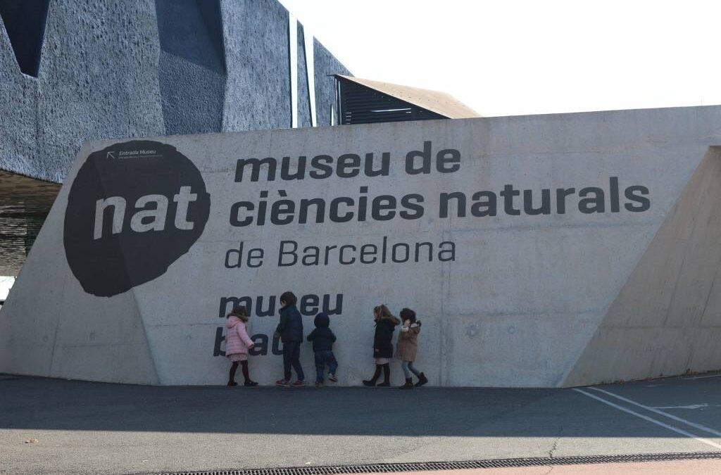 Visita amb nens al Museu Blau