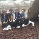 Granja para ir con niños: Can Gel