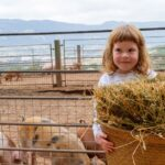 VISIT WITH CHILDREN THE SALGOT ECO FARM IN EL MONTSENY
