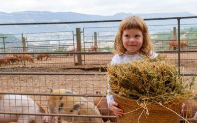 Visita amb nens la Ecogranja Salgot al Montseny