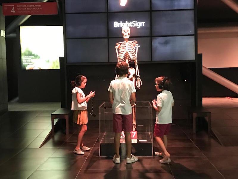 VISITAR CON NIÑOS LA EXPOSICIÓN HUMAN BODIES EN BARCELONA