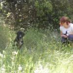 Una mañana de cuentos en L'Associació d'Amics dels Animals del Maresme
